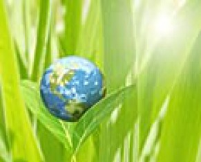 cropped-globe-in-grass.jpg